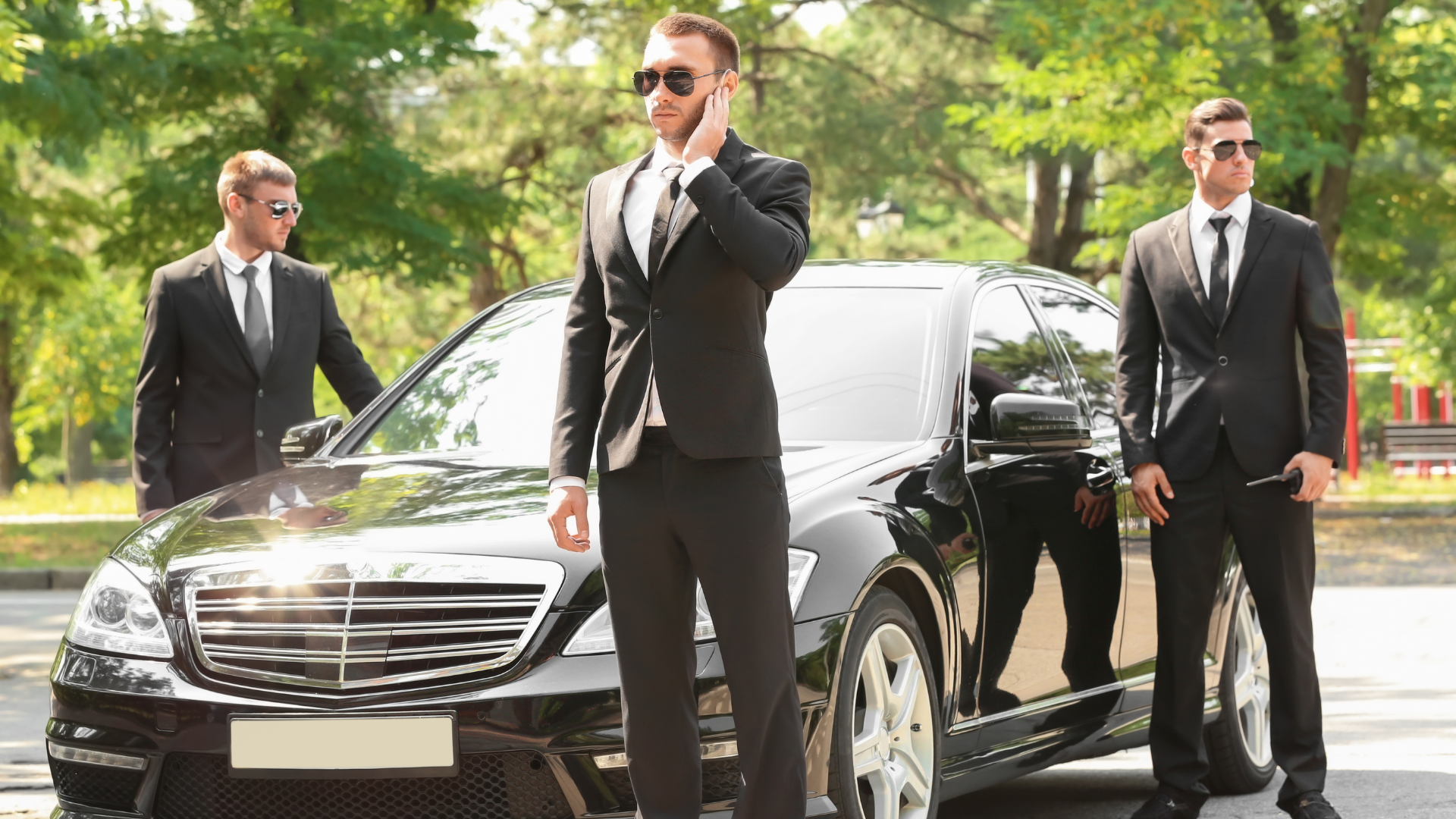 Private security (Bodyguard)